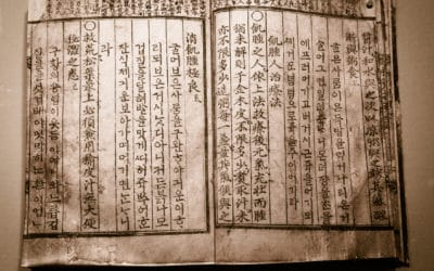 What Are the Endangered Languages Known for Interpretation?